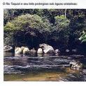 """ELDORADO NO GUIA  """"ROTEIROS  PAULISTAS"""""""
